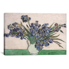 Irises, 1890 by Vincent van Gogh Gallery Wrapped Canvas Artwork - 40
