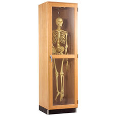 Science Lab Hanging Skeleton Wooden Locking Cabinet with Retractable Glide - 24