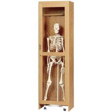 Science Lab Mobile Wooden Locking Skeleton Cabinet - 24