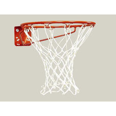 Economy Official Size Basketball Goal