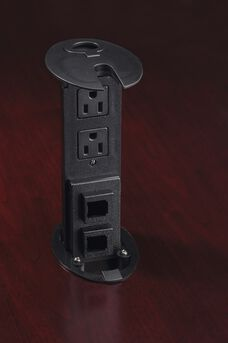 Power and Data Module with Two Power and Two Data Outlets - Black
